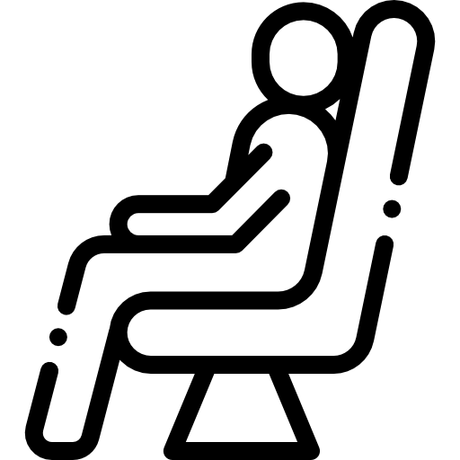 Passenger  free icon