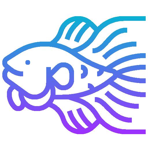 싸우는 물고기  무료 아이콘