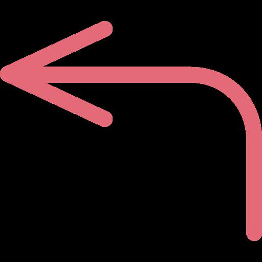 flèche gauche  Icône gratuit