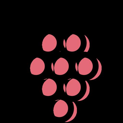 les raisins  Icône gratuit