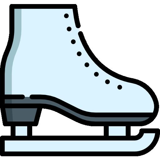 Skates  free icon