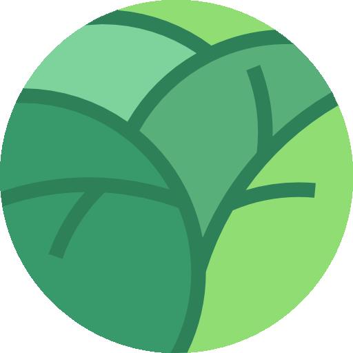 Ginkgo  free icon