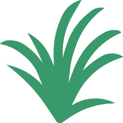Lemongrass  free icon