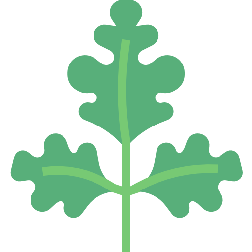 Parsley  free icon