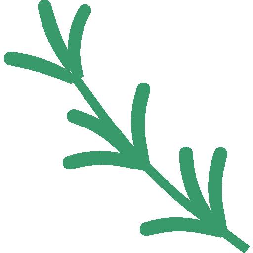 Rosemary  free icon