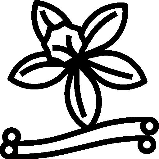 Vanilla  free icon