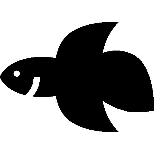 샴 싸우는 물고기  무료 아이콘