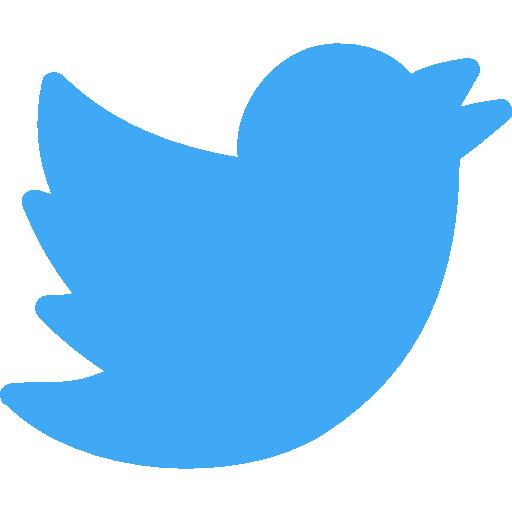 twitter  бесплатно иконка