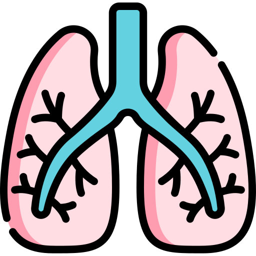 Lungs  free icon