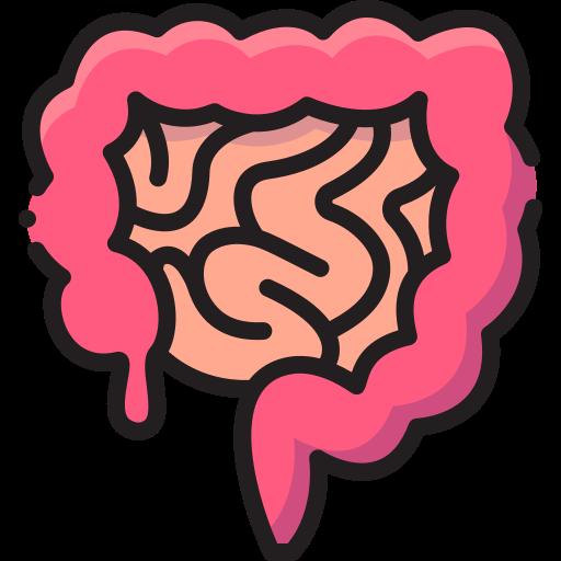 Intestine  free icon
