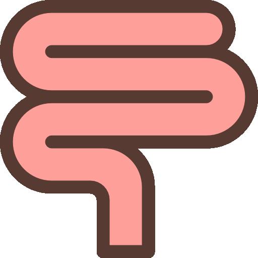 Кишечник  бесплатно иконка