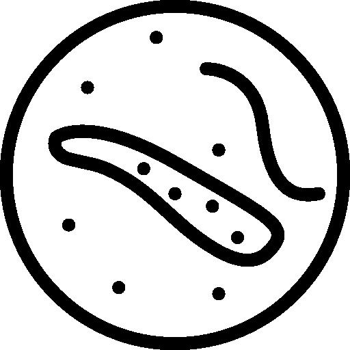 les germes  Icône gratuit