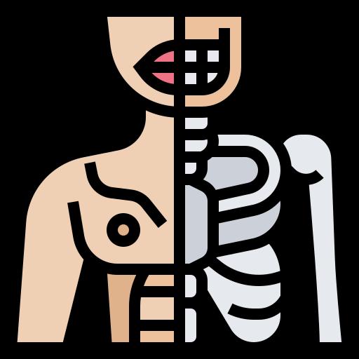 Human body  free icon