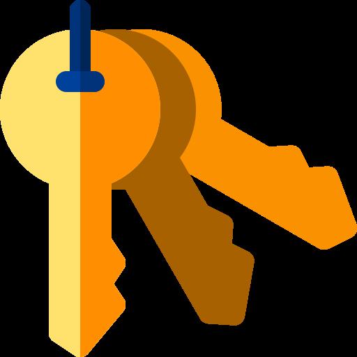 Keys  free icon