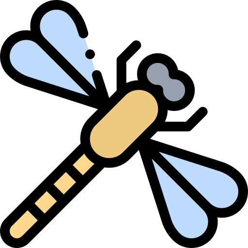 Dragonfly  free icon