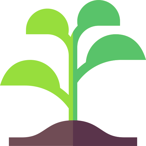 Sprout  free icon