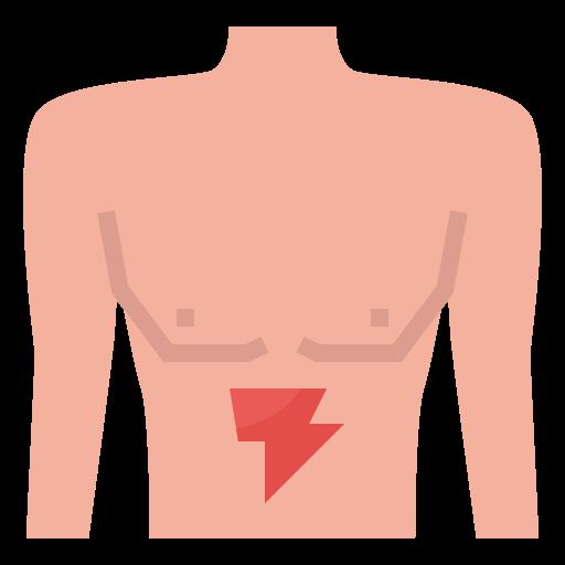 Stomach  free icon