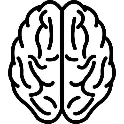 Brain upper view outline  free icon