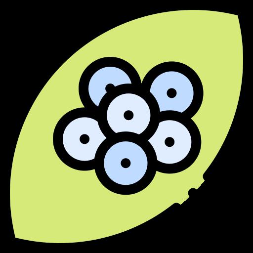 ovos  grátis ícone