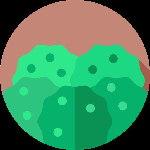 floresta tropical  grátis ícone