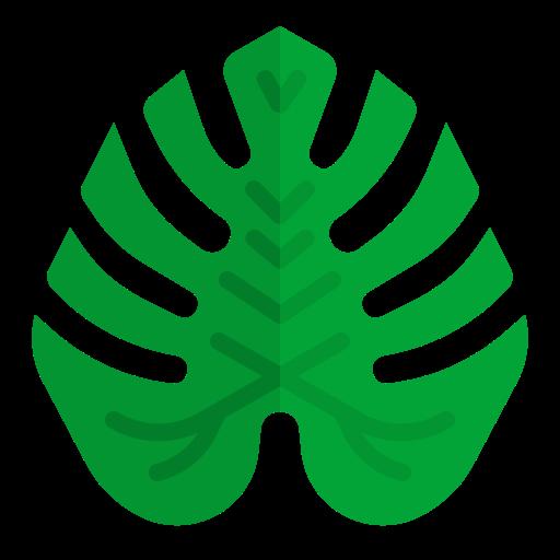 monstera 잎  무료 아이콘