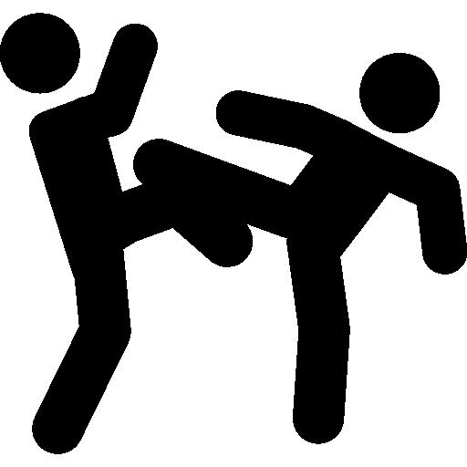 Martial arts couple fight  free icon