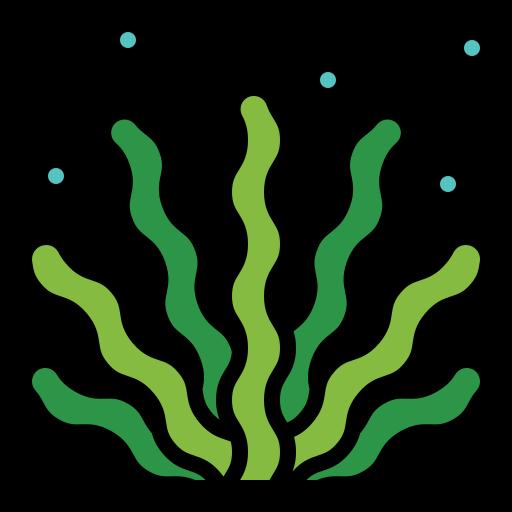 Seaweed  free icon