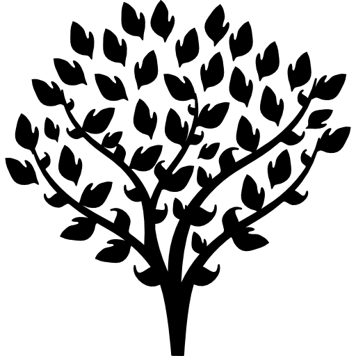 Tree with thin branches covered by leaves  free icon