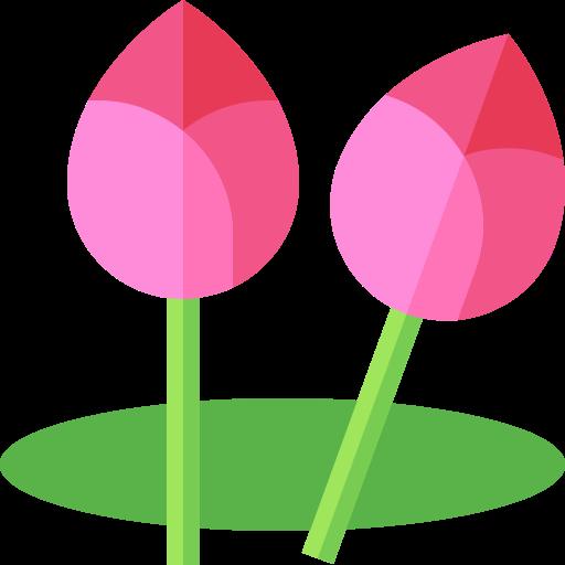 lotus  kostenlos Icon
