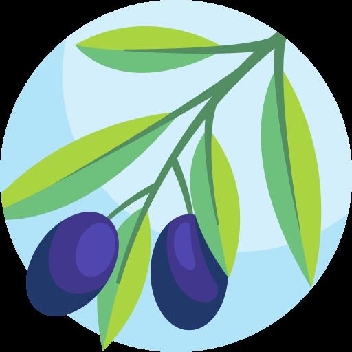 Olive  free icon