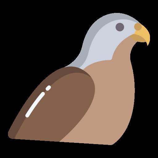 falcão  grátis ícone