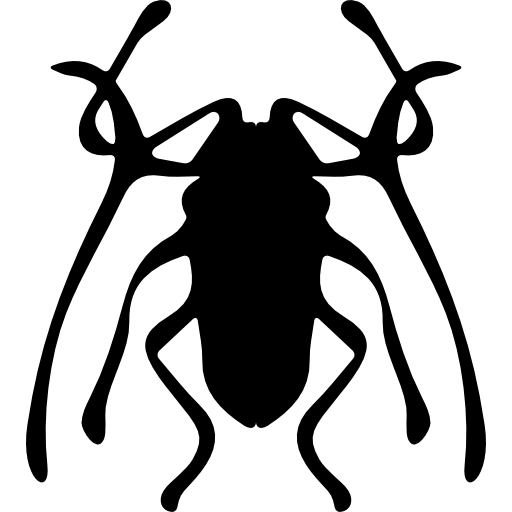 딱정벌레 곤충 trictenotomidae  무료 아이콘