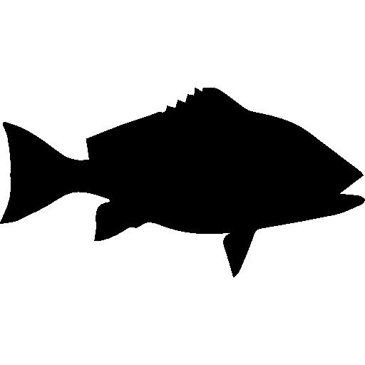 붉은 도미의 물고기 모양  무료 아이콘