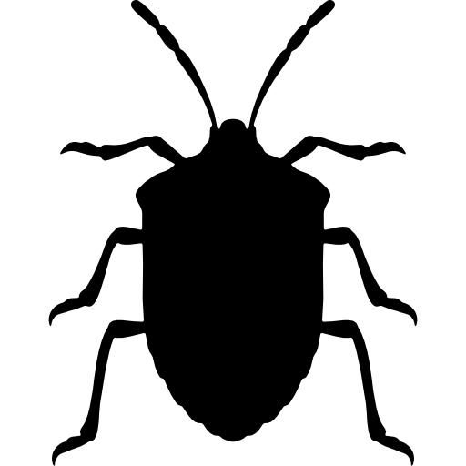 Stink bug insect shape from top view  free icon