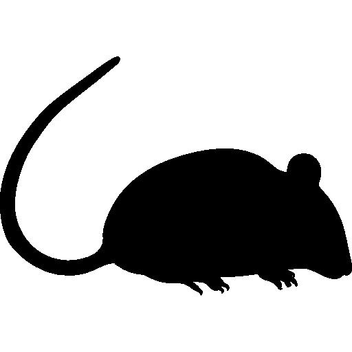 Rat silhouette  free icon