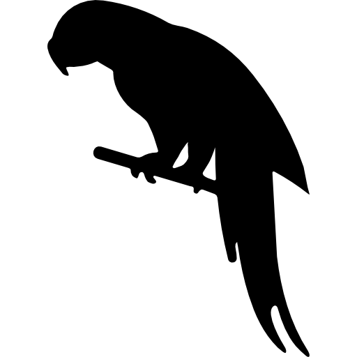 Parrot shape  free icon
