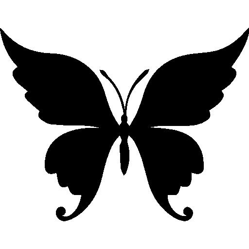 Butterfly beautiful shape  free icon