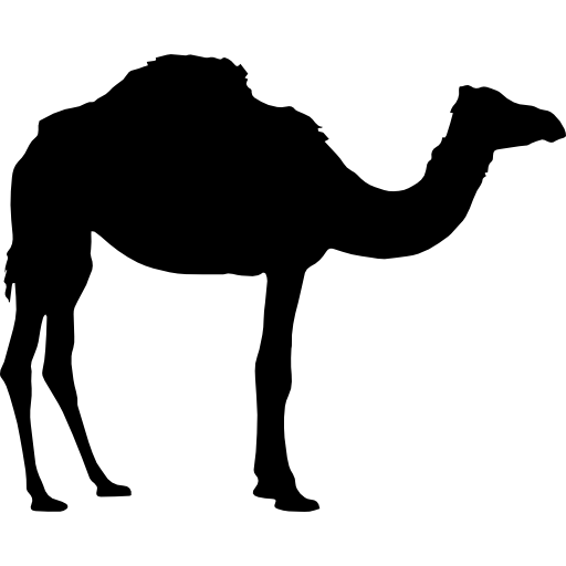 Camel silhouette  free icon