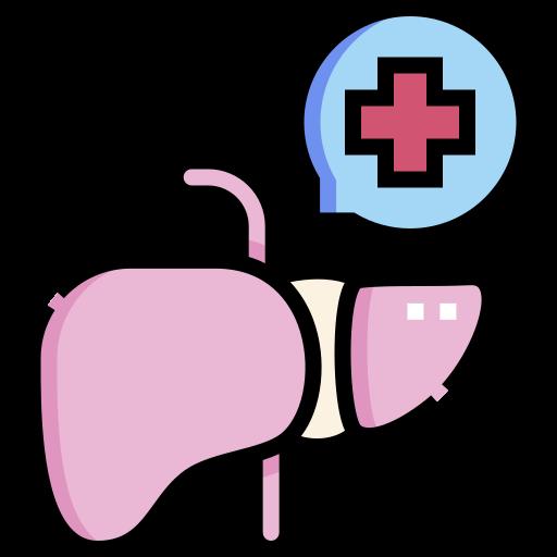 Liver  free icon
