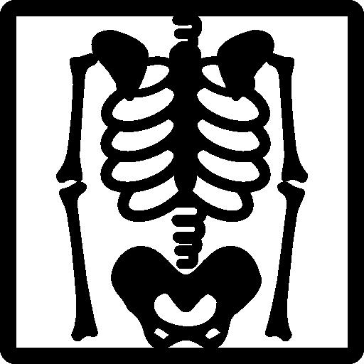 Skeleton view on x ray  free icon