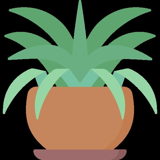 plante araignée  Icône gratuit