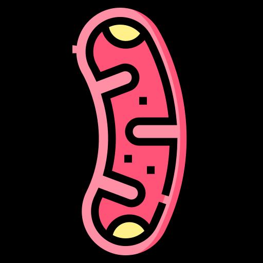 Mitochondria  free icon