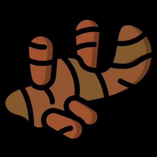 jengibre  icono gratis