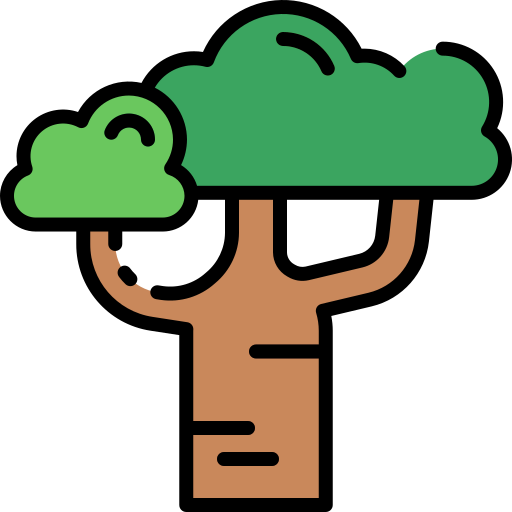 Baobab  free icon
