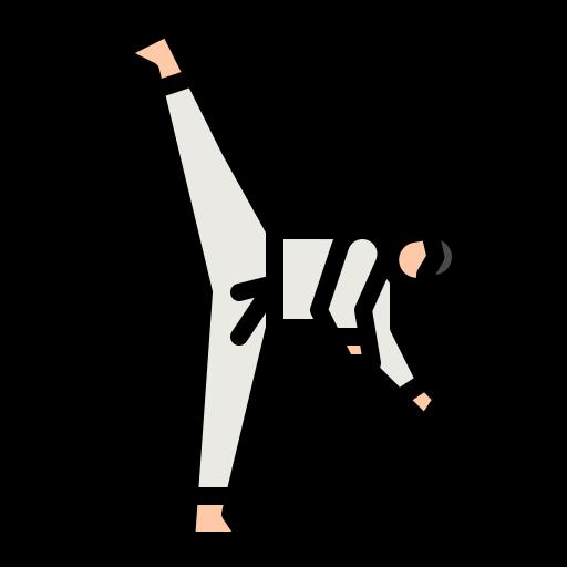 taekwondo  Icône gratuit