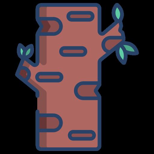 Birch tree  free icon