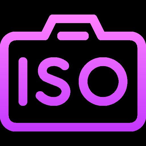 Iso  free icon