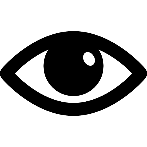 opción de interfaz de ojo abierto visible  icono gratis