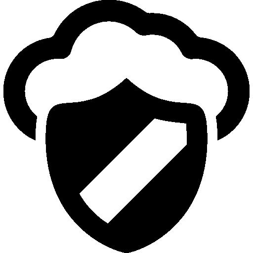 protegido en internet  icono gratis