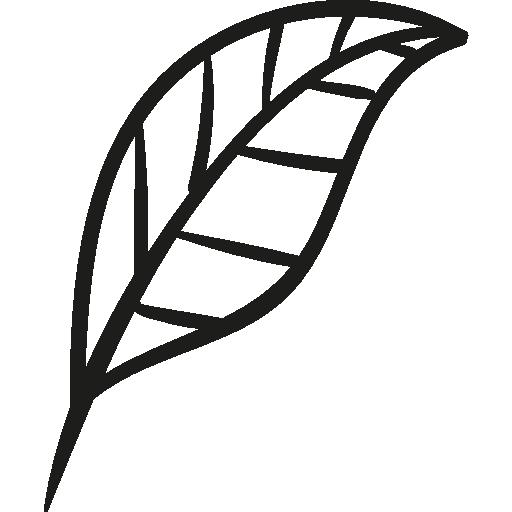 jardin de feuilles de plantes  Icône gratuit